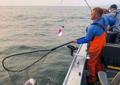 Curtis Fish Net